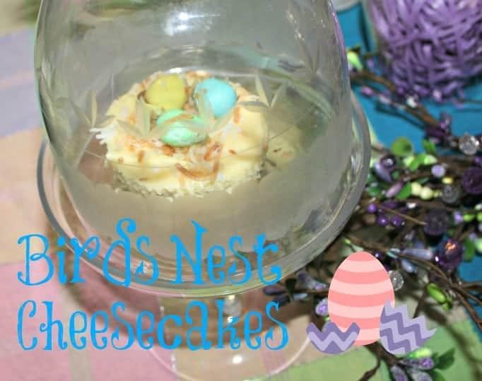 Birds nest cheesecakes
