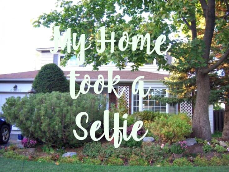 My home took the HomeSelfe App