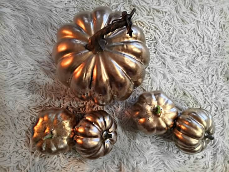 Fall pumpkins in white, gold and orange