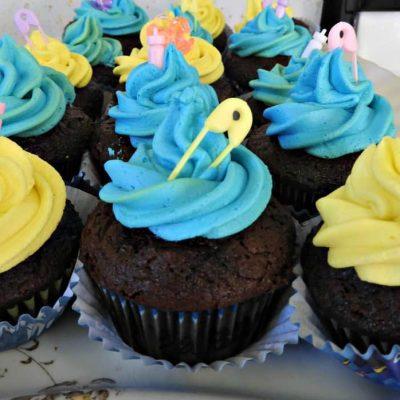 The Shower Series- Rainbow Buttercream Cupcakes