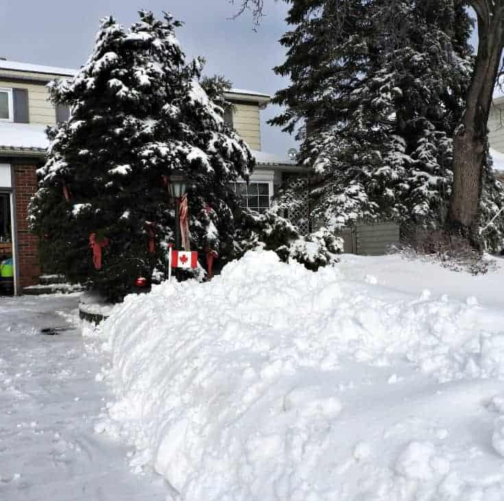 winter 2016/2017 in Ottawa