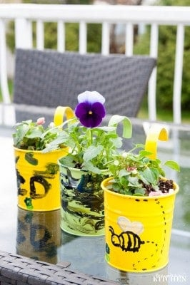 dollar store planters