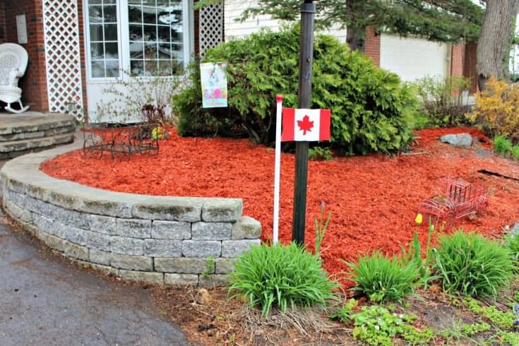 yard work in red cedar mulch in Ottawa