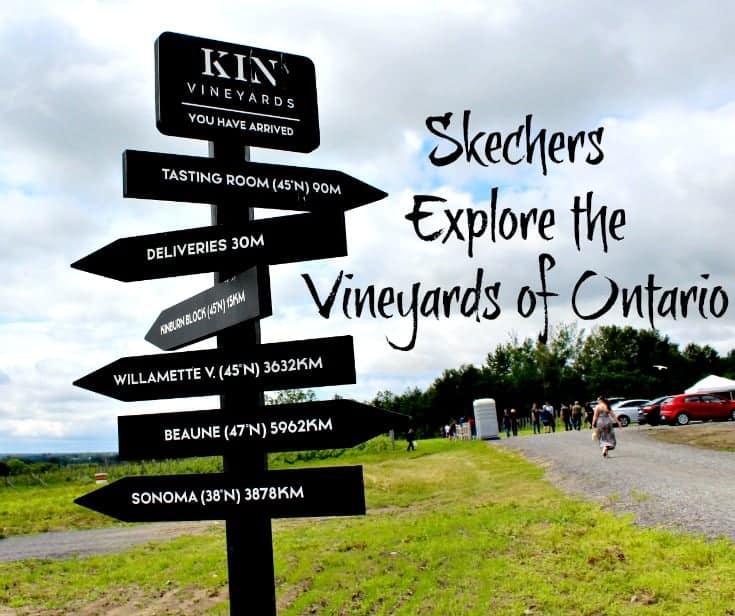 exploring Kin Vineyards in my Skechers
