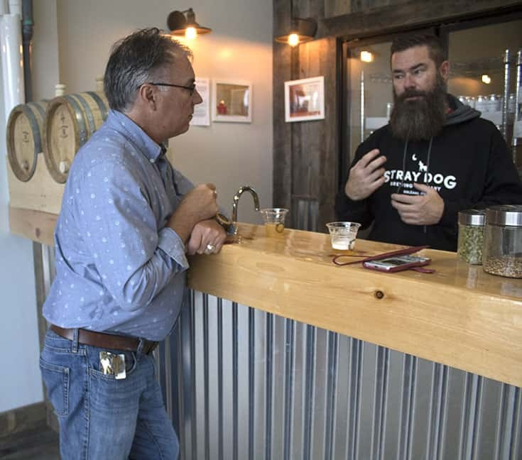 Stray Dog Brewing Company in Orleans and their tasting bar