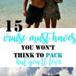 the list of 15 must haves to take cruising
