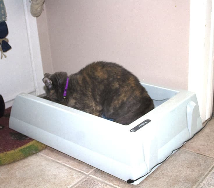 Original Self-Cleaning Litter Box