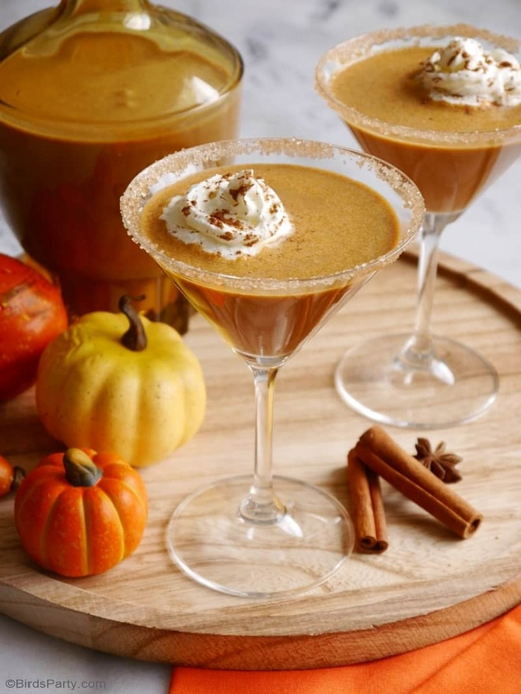 pupmpkin-spice-baileys-homemade-irish-cream-recipe3
