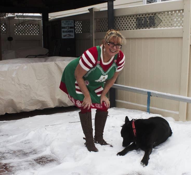 elf dress from Kohls (4)