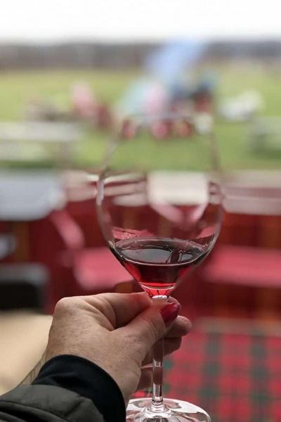Touchdown Wine Pairings