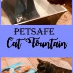 Petsafe cat fountain