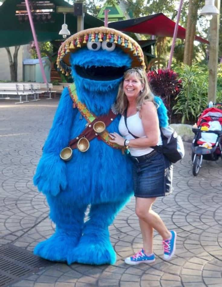 cookie monster and a labour of life