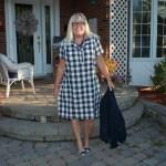 eva trends blue plaid dress