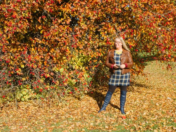 fall foliage and Old navy