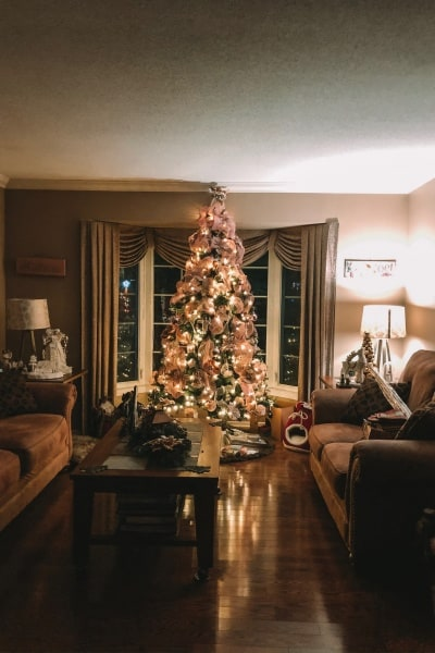 Hoppy Holidays and a Christmas Tree Hop