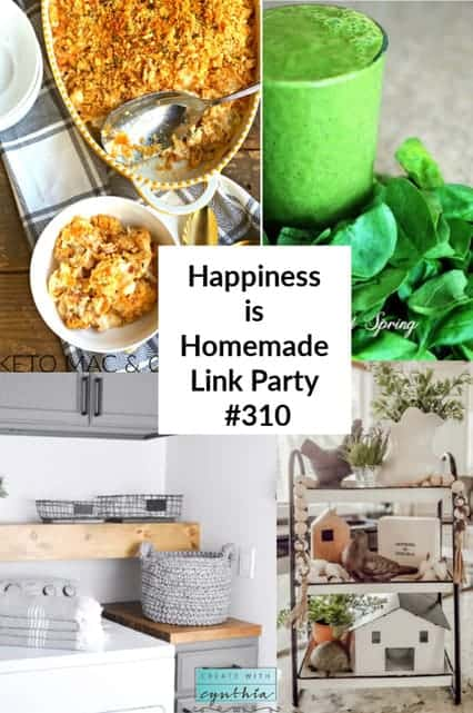 happiness is homemade 310