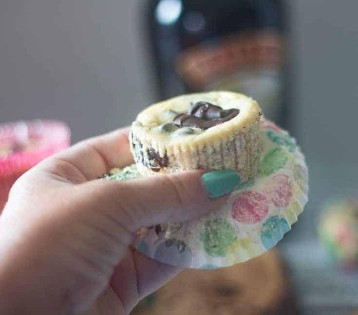mini cheesecake servings