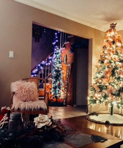2020 Christmas Tree Hop