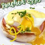 poached egg pin